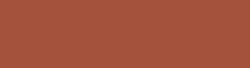 AM_UiS_Logo_Bronse_250x68